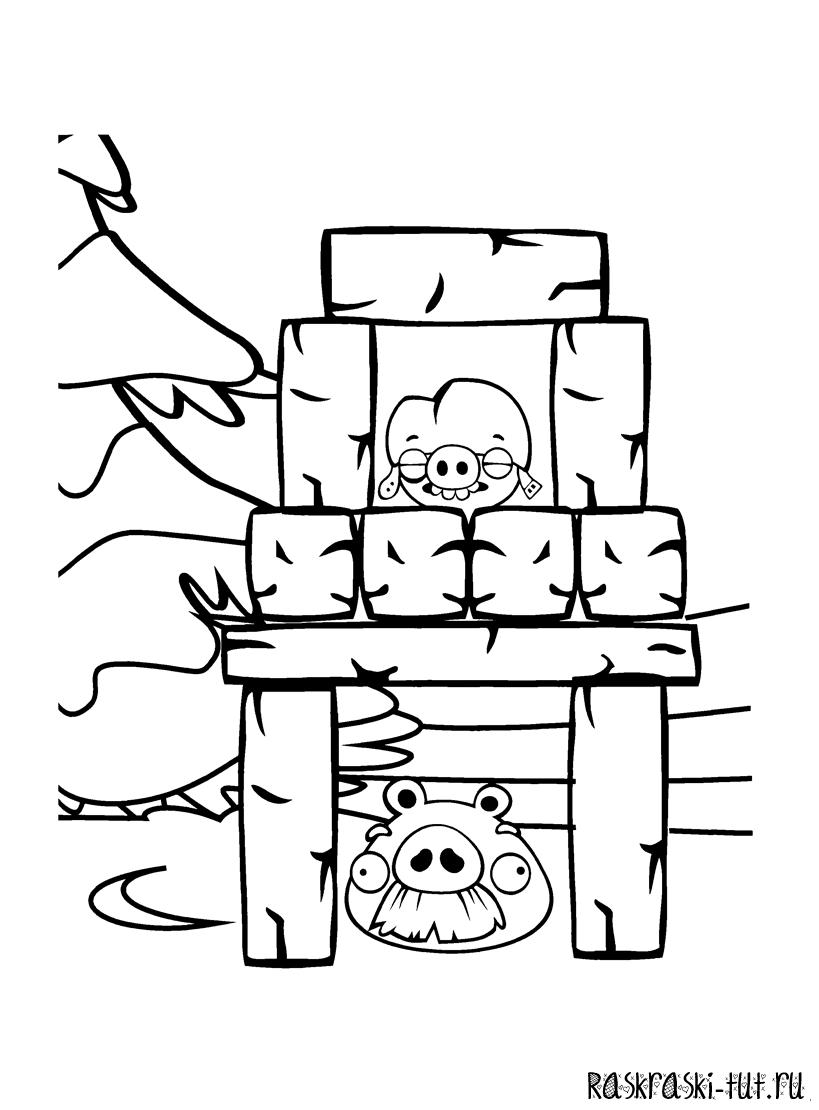 раскраски Энгри Бердс / Angry Birds 5