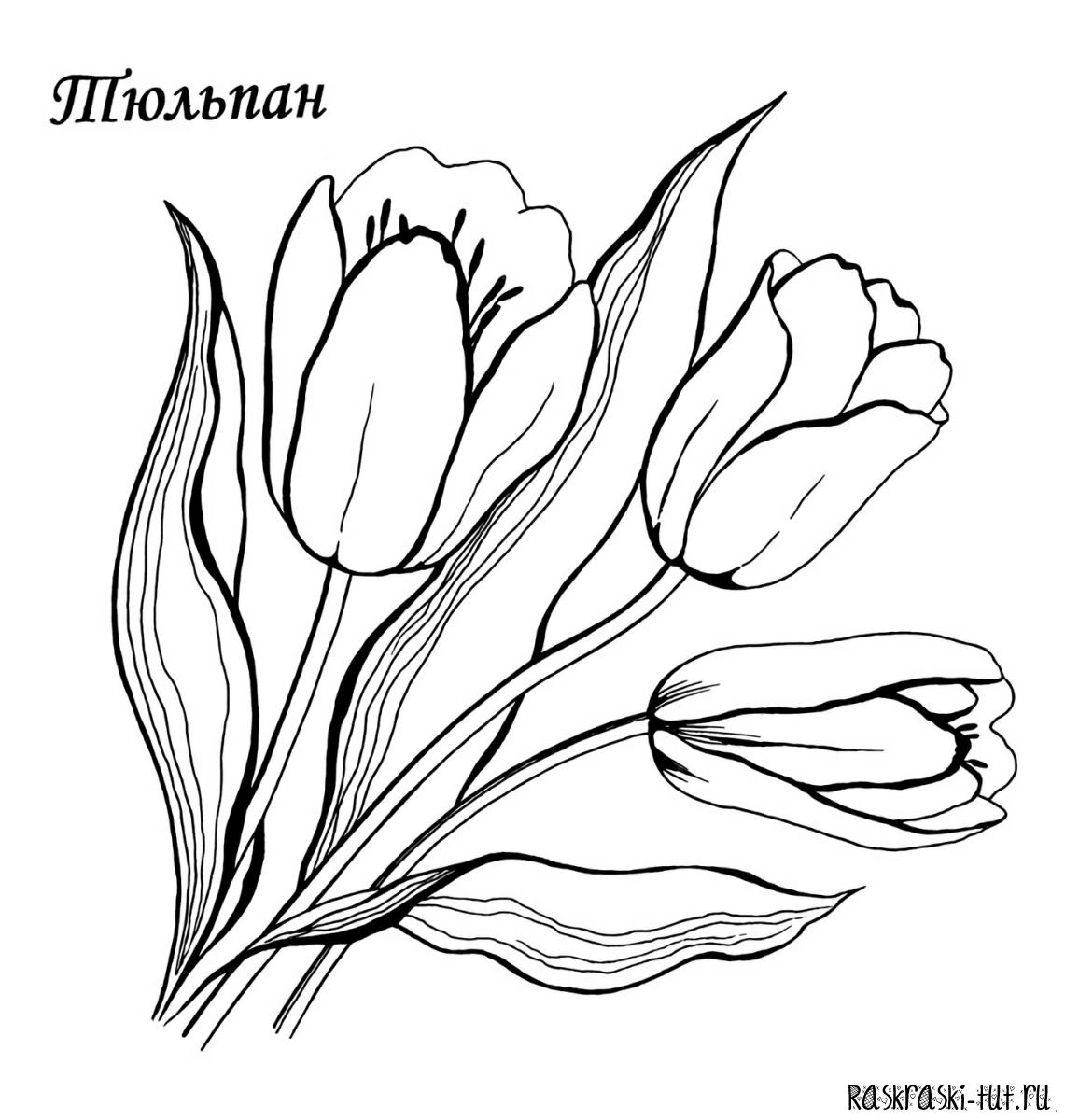 Раскраска с цветами онлайн бесплатно