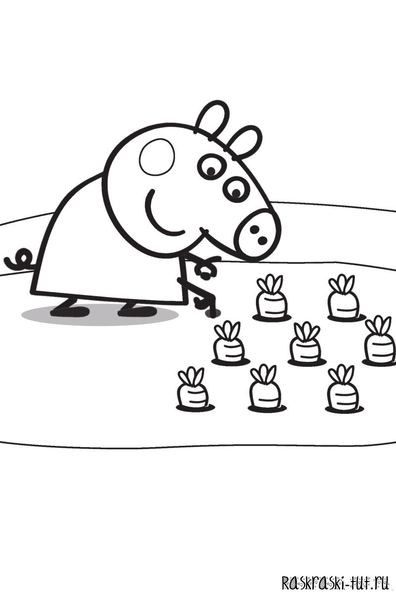 Распечатать раскраску Свинка Пеппа