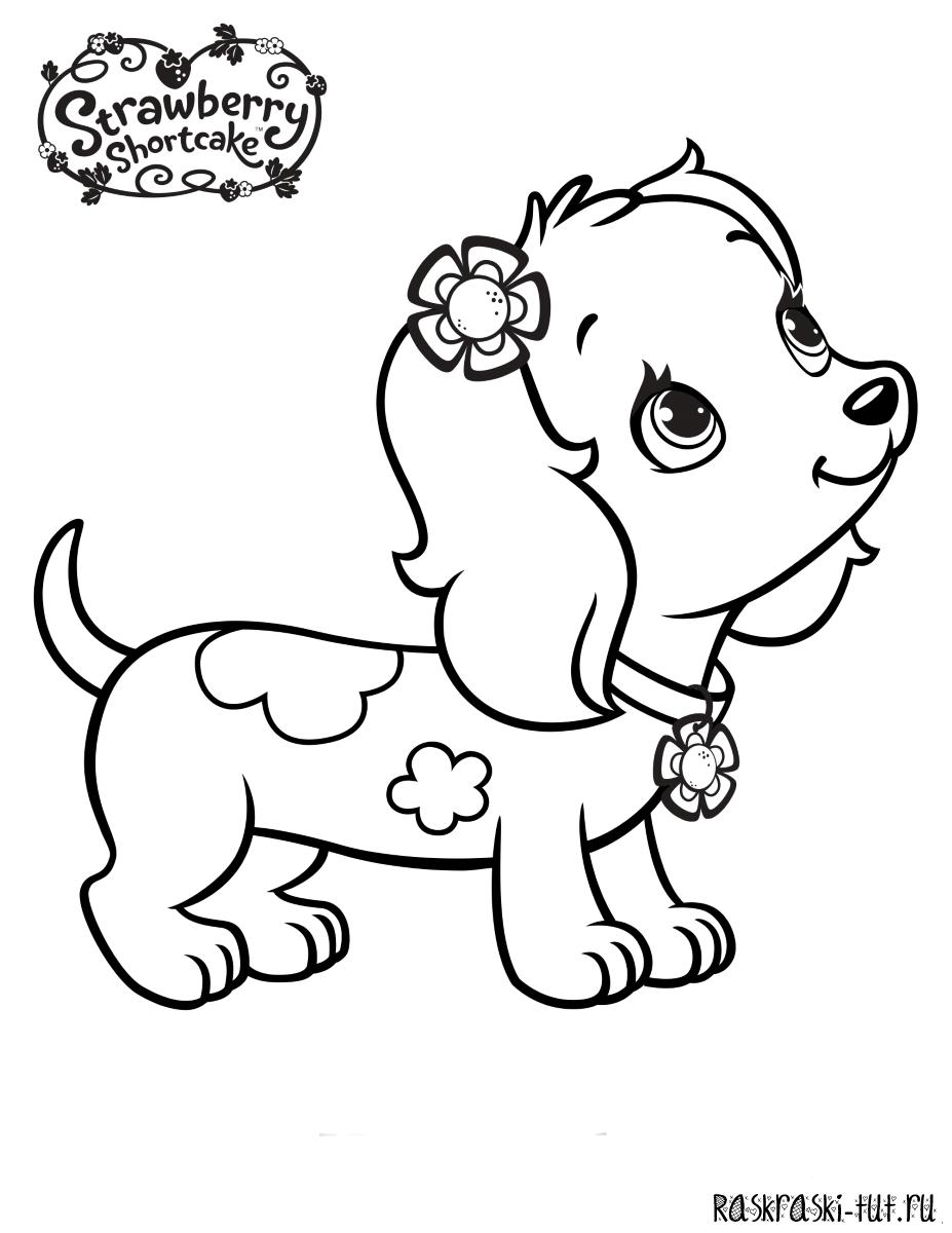 Раскраска для девочек собаки - 8